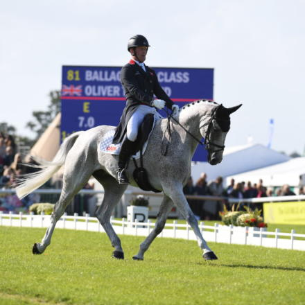 Oliver Townend BALLAGHMOR CLASS LRBHT PN19 113668