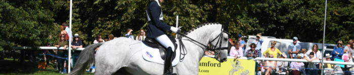 British Sport Horse LRBHT PN18 101110