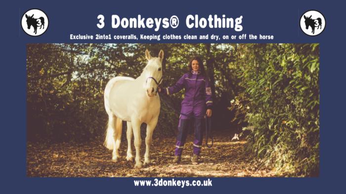 3 Donkeys