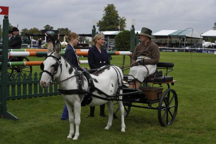Donkey Parade Burghley PN17 94172