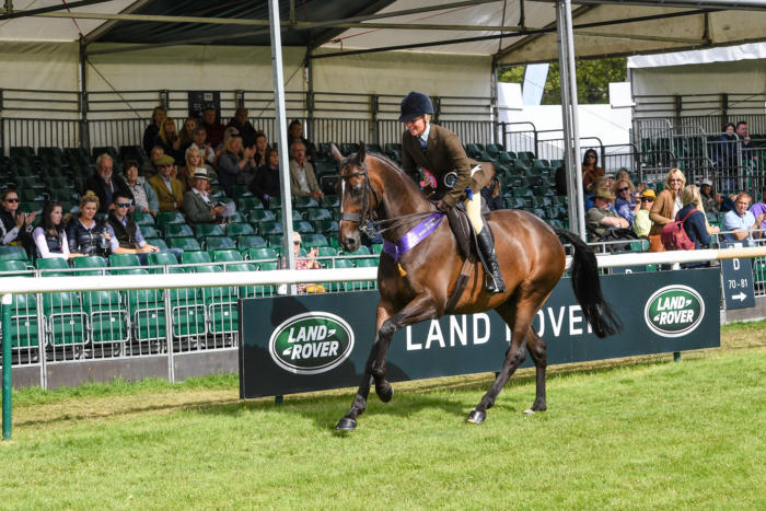 LR Lough Inch LRBHT MR19 129332