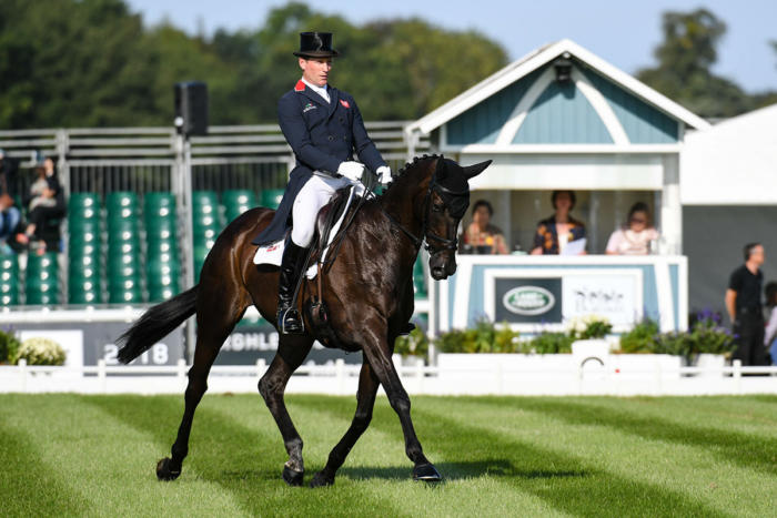 Mhs King Joules Lrbht Np18 80844