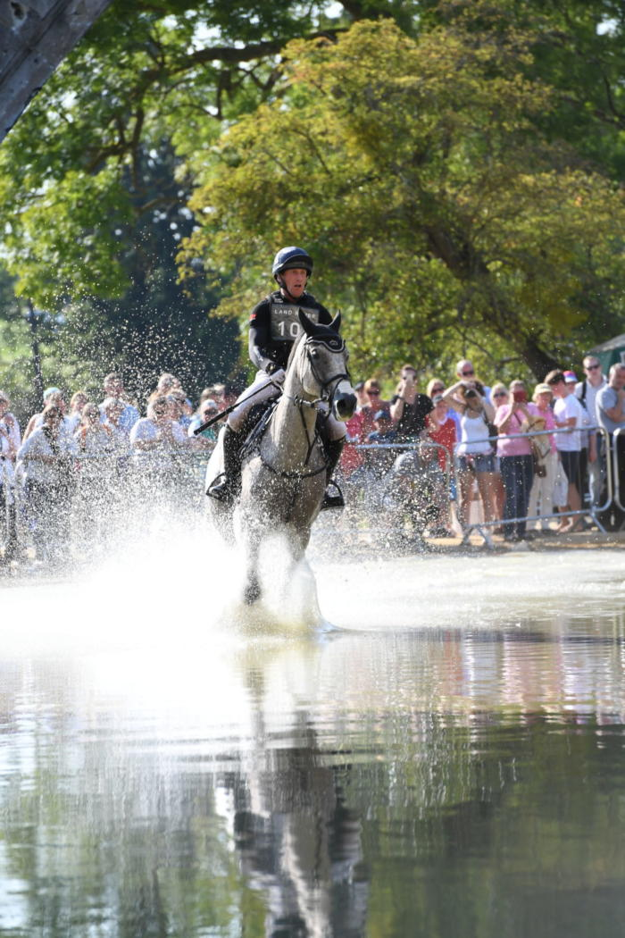 Oliver Townend LRBHT PN18 95650